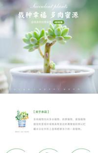 [B1690] 绿色简约风格-鲜花园艺、绿植、多肉植物等模板